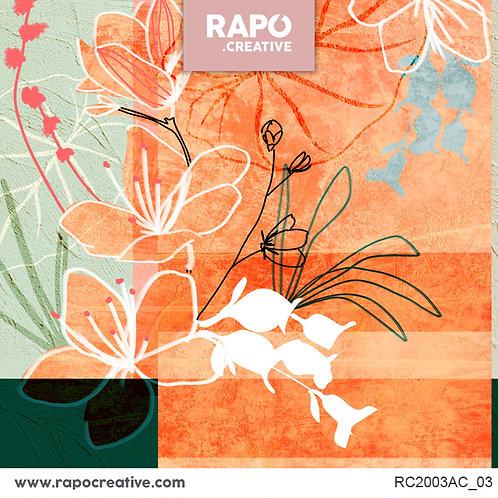 RC2003AC_03