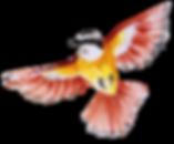 Pássaro.png