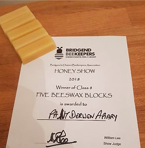 Wax Block Award.jpg