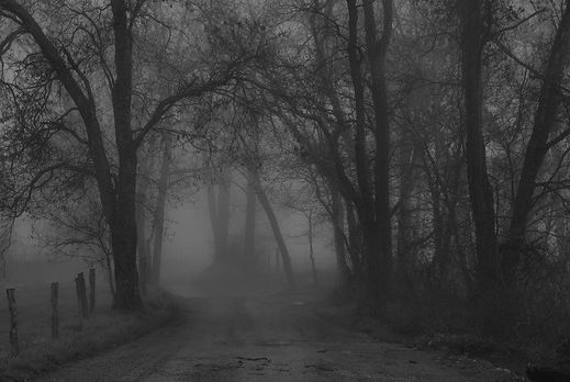 spooky road1.jpg