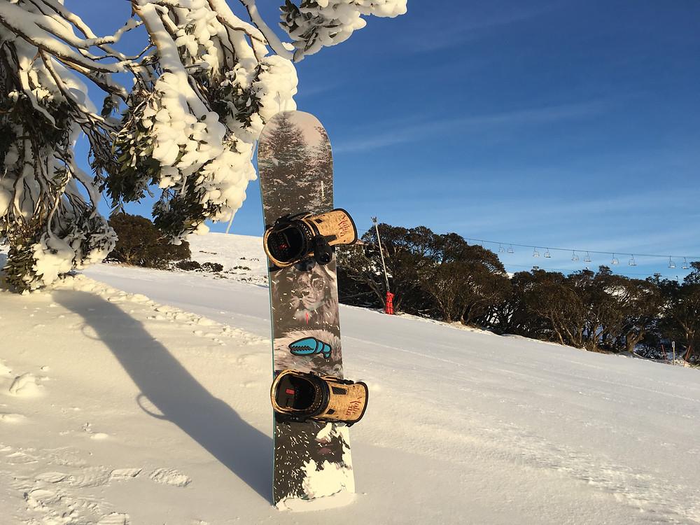雪地實物照