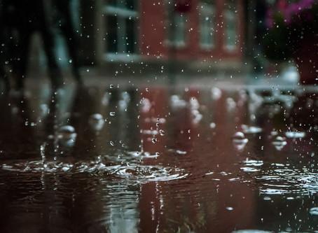 It's Rainy! What should We Do?