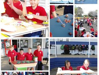 Linton Camp School Market Day