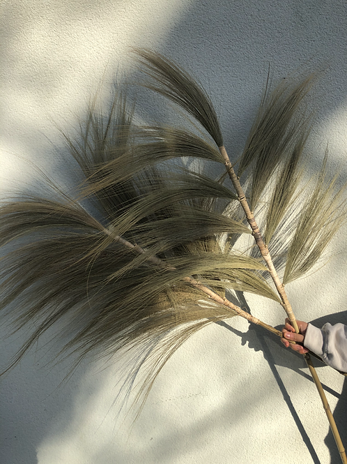 Big & Tall Grain Grass Stems