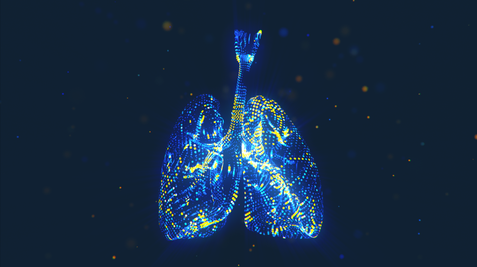 Lung_Intro_Loop_00236.png