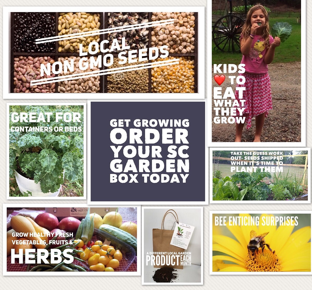 Click Here To Sign Up For Our SC Local Garden Box.