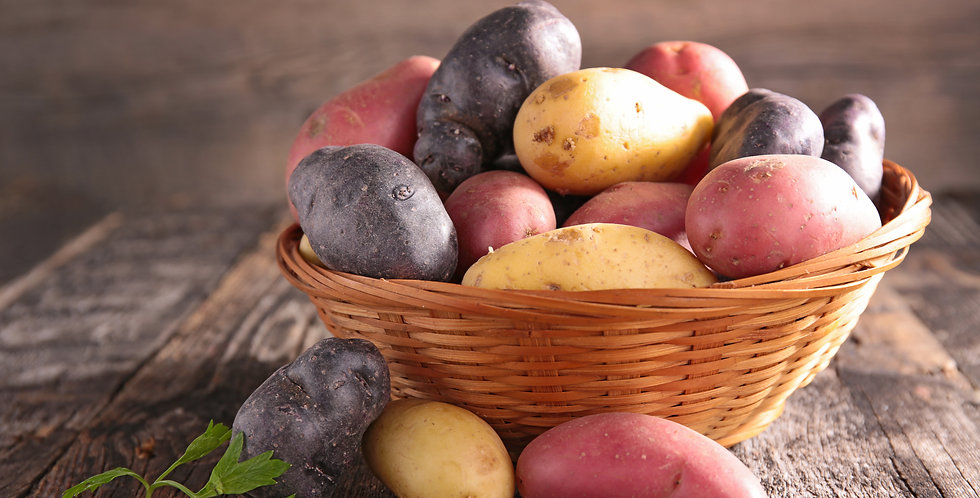 Mix of Pink, Purple & Yellow Fingerling Potatoes 1 pound