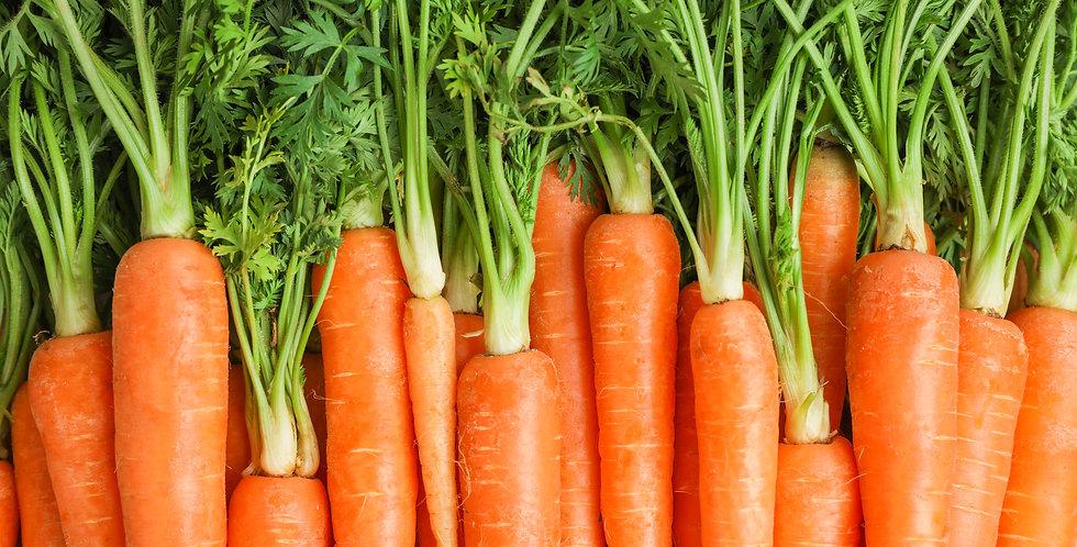 Chanteney Carrots 1/4 oz  approx. 500 seeds