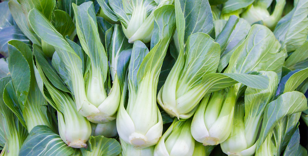 Bok Choy 1/4 oz Tender Chinese Cabbage