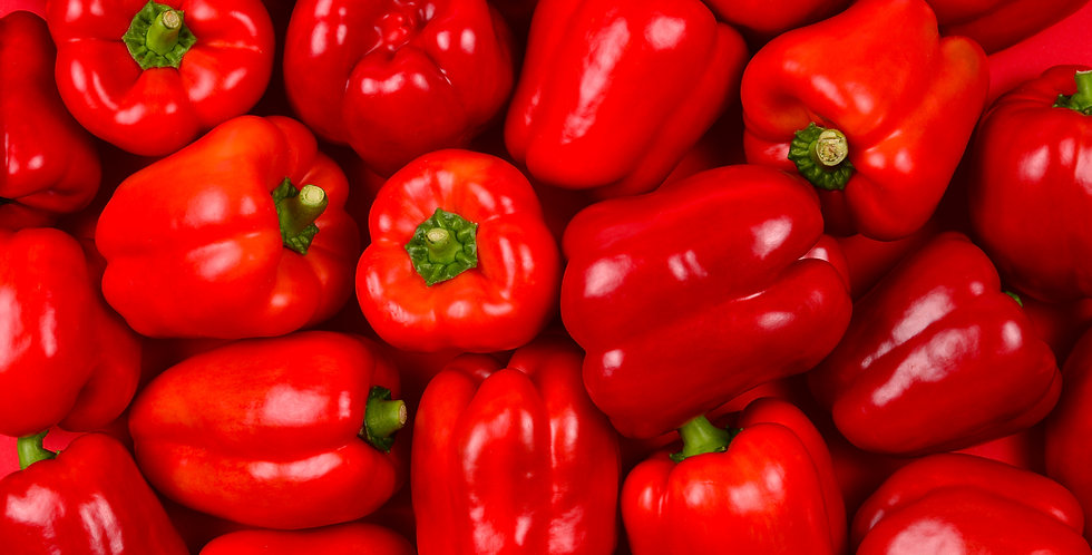 Red Bell Pepper Seeds 12 Seeds Heirloom