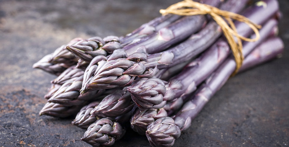Purple Passion Asparagus-3  2 year roots