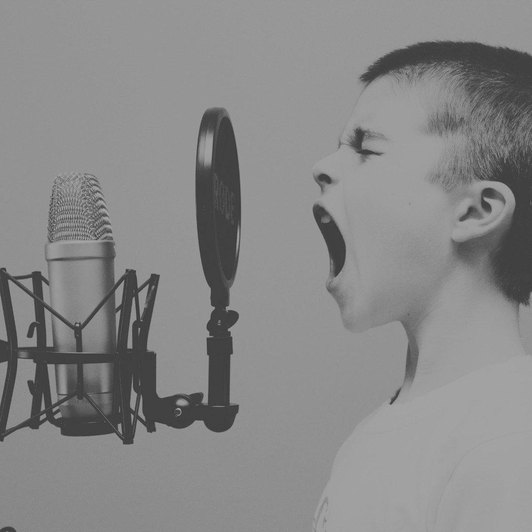 1 Hour Online Voice Training