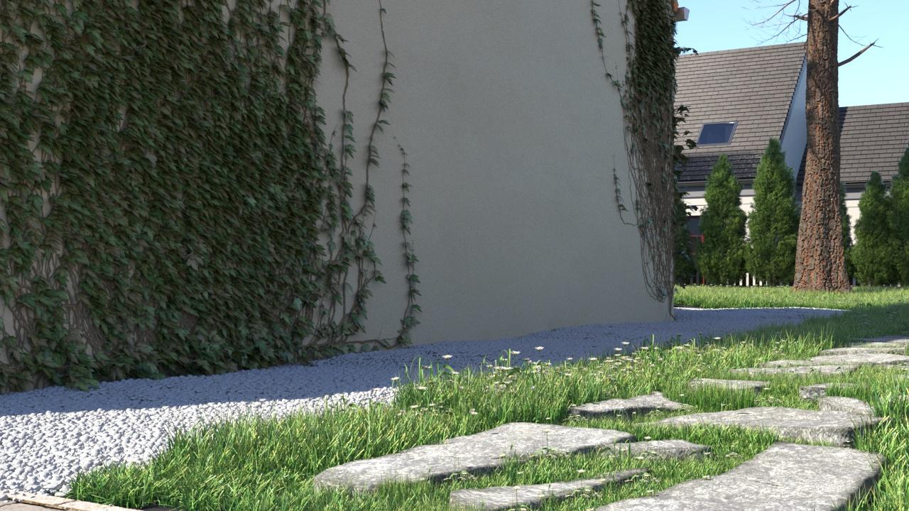 type 1_chemin pierres_ copie
