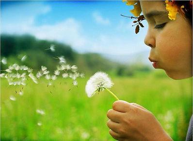 QUICK HABITAT® : Respect de l'environnement
