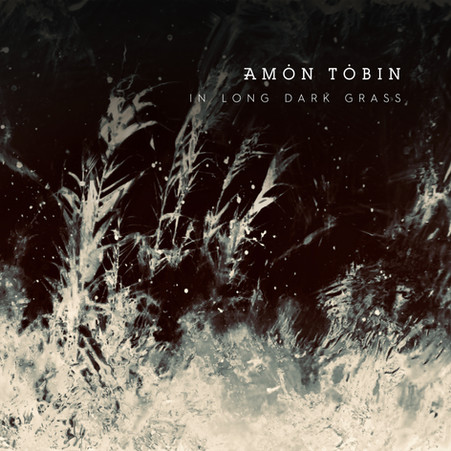 Amon Tobin - In Long Dark Grass