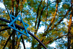 Does the Jewish Community Connect Teens to a Jewish Network?