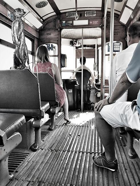 tram_def.jpg