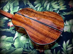 #179-String Tenor
