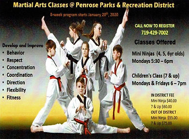 PPRD website- martial arts class- start