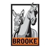 The Brooke