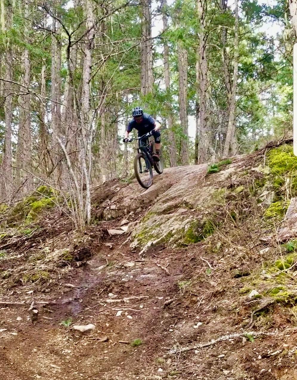 boy, mountain biking down rock feature in Pemberton, surrounded by trees