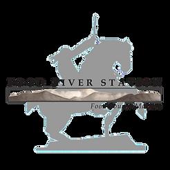 Grey  Logo Transparent-4.png