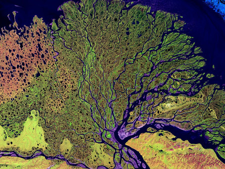 Satellite imagery for agriculture growth