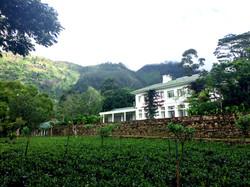 The Planters House Tea Estate Hotel