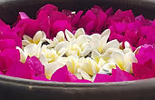 The Planters House - Sri Lanka - Tea Estate Boutique Hotel - Flowers