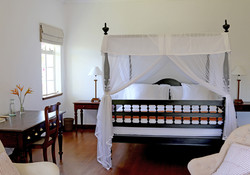 The Peacock Suite
