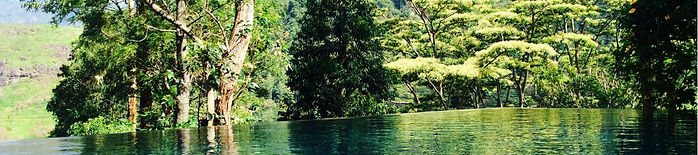 The Planters House - Sri Lanka - Tea Estate Boutique Hotel - Swimming Pool