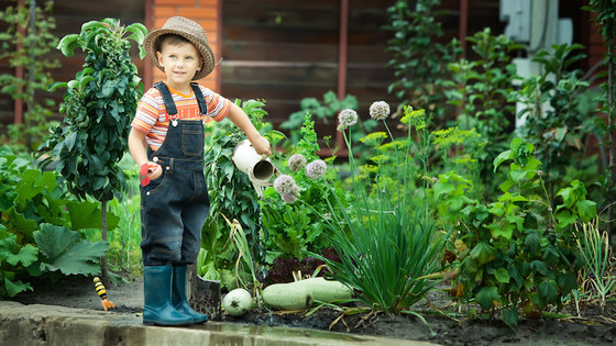 The Top 10 Gardening Tips to Save Your Spine & Keep a 'Spring' in Your Step.