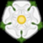 WHITE ROSE OF YORK,tudor rose