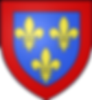 #House of Valois-Anjou#