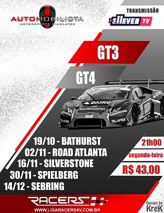 GT3 E GT4.png