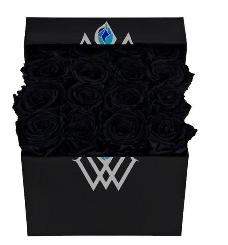 Box of Black