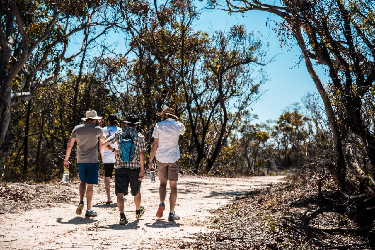 Following along traditional song lines within Ku-ring-gai Chase National Park