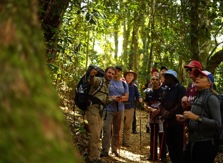 School principals rejuvenate on rainforest retreat