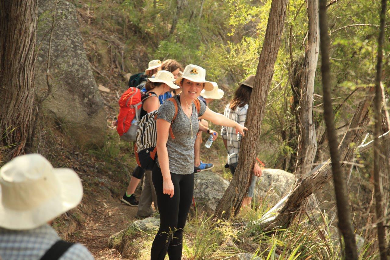 Friendly wildlife encounters - Snakes, lizards, birds, bees, wallabies, echidnas, kangaroos... all in a day's walk.