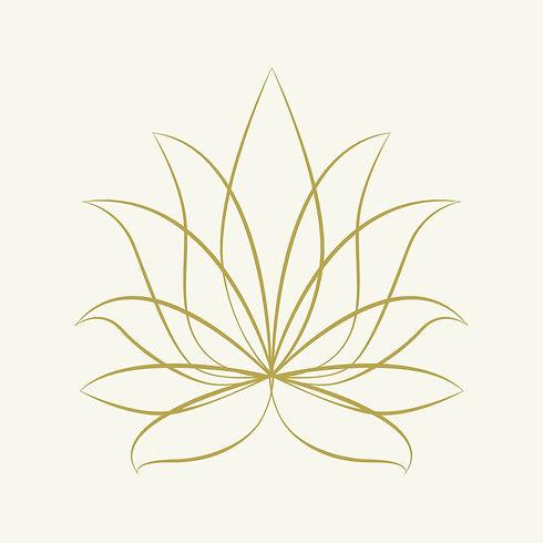 Lotusblüte.jpg