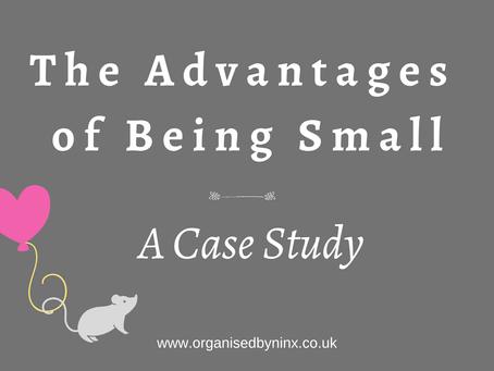 Small Business Marketing - Case Study