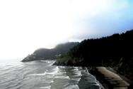 Fog vista Oregon