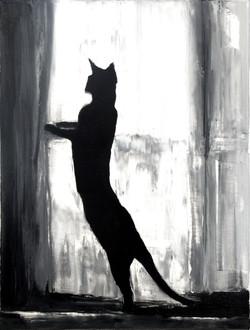 Patrice Palacio - chat à la fenêtre