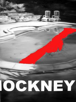 Patrice Palacio - Serie 102 - Hockney