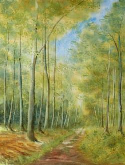 En forêt d'Eu