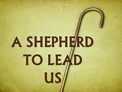 Shepherd To Lead19.jpg