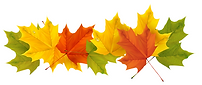 clipart-leaves-clipart-autumn-5.png