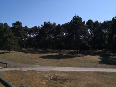 13-Environnement.jpg