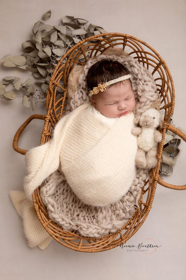 Newborn Gallery