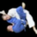 amarillo-brazilian-jiu-jitsu-300x237-2_p